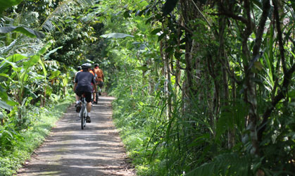 bali countryside cycling