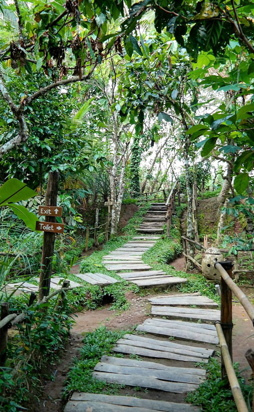 Bali Farm Tour - Bali Farm And Garden - Coffee Plantation Bali